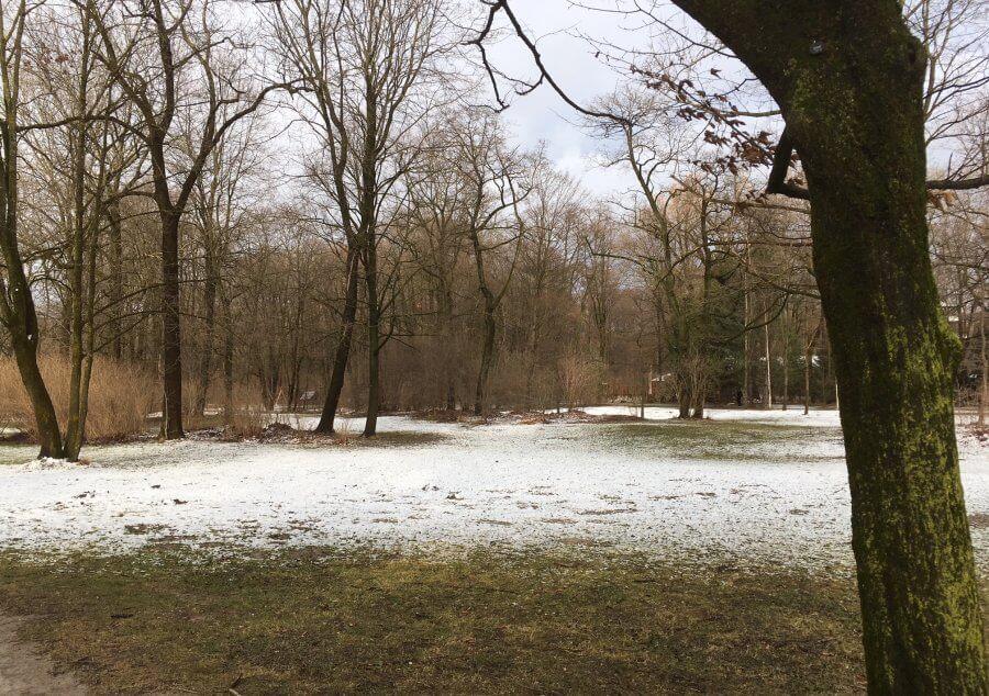 Grauer Tag im einsamen Park