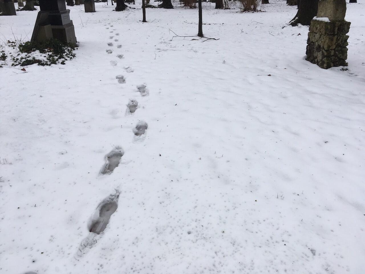 Einsame Fußspuren im Schnee