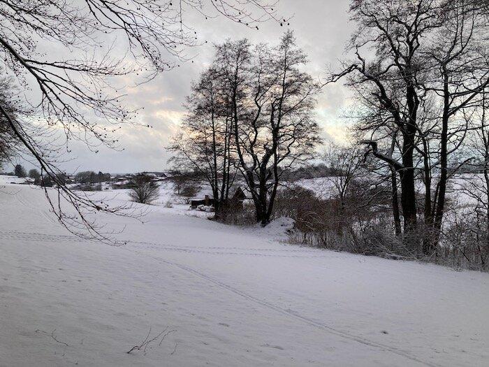 Schneelandschaft mit Bäumen. Foto. Ulrike Ziegler